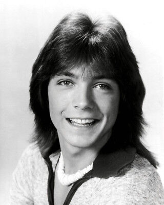 David Cassidy UNSIGNED Photograph - K9072 - SEXY!!!!! • 3.99£