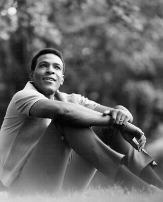Marvin Gaye Soul Motown Legend 10x8 Music Photo Print Picture • 3.99£