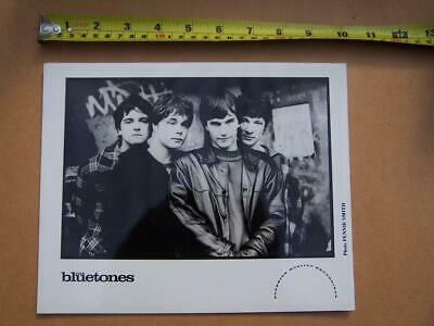 The Bluetones    Promotional   Photo - Used Condition - Please Scroll Down • 5£