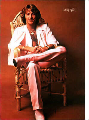 Andy Gibb Poster Page . The Bee Gees . Rs4 • 11.99£
