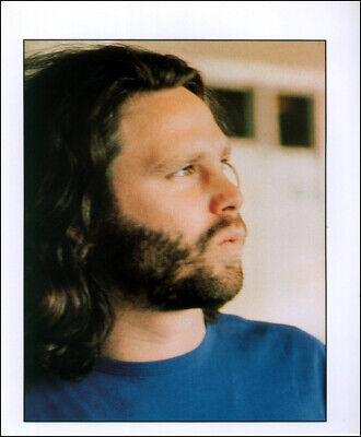 The Doors Poster Page . Jim Morrison . F27 • 5.99£