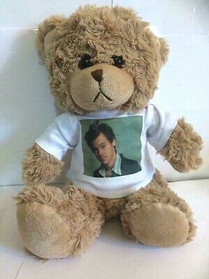 HARRY STYLES 8 Inch TEDDY BEAR 2020 • 14.99£