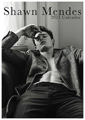 Shawn Mendes 2021 A3 Poster Size Calendar New And Sealed + Free Uk Postage • 11.99£