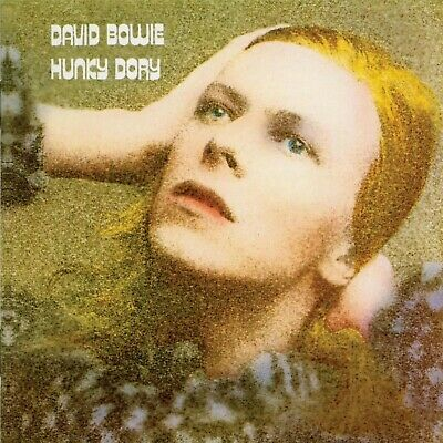 David Bowie   Hunky Dory ..Retro Album Cover Poster Various Sizes • 8.99£