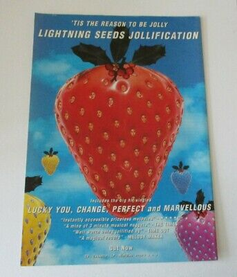 Lightning Seeds Jollification Advert/Poster A4 Size • 2.99£