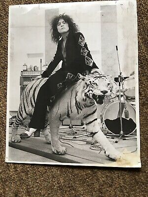 "Rare Vintage Marc Bolan - T Rex -  Press Photo 10 X 8"" (Born To Boogie On Tiger) • 30£"