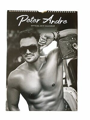 Peter Andre Official 2019 Calendar Brand New And Sealed • 10£