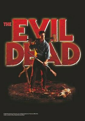 THE EVIL DEAD Textile Poster Fabric Flag  • 9.99£