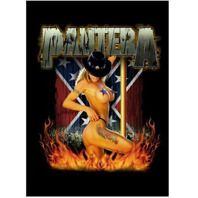 PANTERA Textile Poster Fabric Flag DANCER • 9.99£