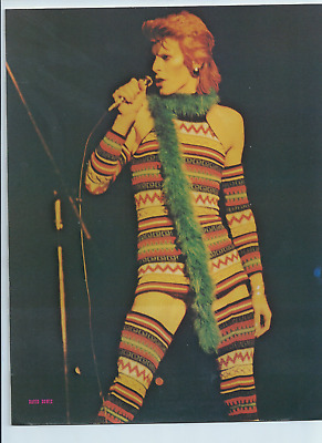 David Bowie 1973 Photo Card • 10£