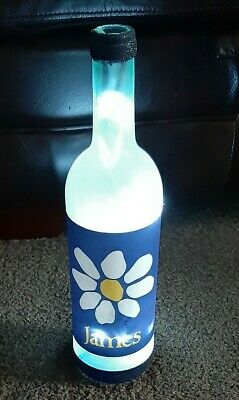 James The Band Tim Booth Bottle Lamp  • 3£