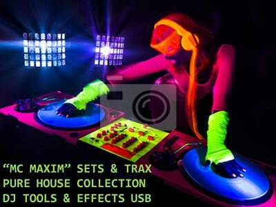 Old School House Music DJ Collection 64GB USB • 17.49£