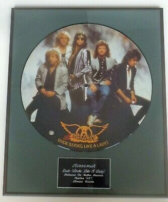 Aerosmith -  Framed Picture Disc  - Dude Looks Like A Lady • 50£