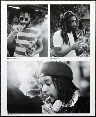 Bob Marley Poster Page . The Wailers Peter Tosh Bunny Wailer Winston Rodney .s49 • 5.99£