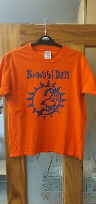 The Levellers Beautiful Days Child T Shirt • 3.50£
