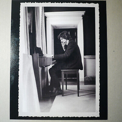 Nick Drake Publicity Photograph Promotional 25x20cm Near Mint Condition Treasury • 29.99£