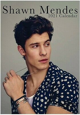 Shawn Mendes 2021 Calendar A3 *Brand New And Sealed * • 9.99£
