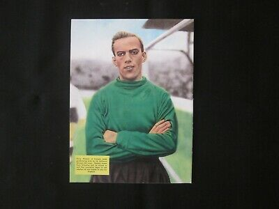 TONY MACEDO Fulham Goalkeeper: Football Annual Picture (James - Sit Down Cover) • 2.99£