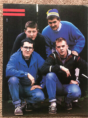 THE HOUSEMARTINS - 1986 Full Page UK Magazine Poster • 3.95£