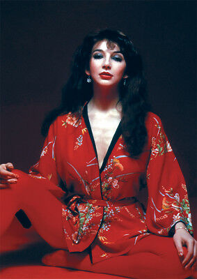 Kate Bush Sitting Red NEW POSTER • 5.99£