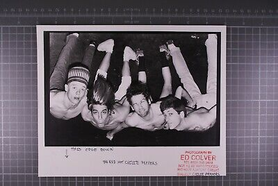 Red Hot Chili Peppers Photo Original B/W 10  X 8  Photographers Stamp  • 35£