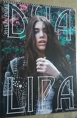 DUA LIPA 2019 A3 Wall Calendar (New, Sealed) • 14.99£