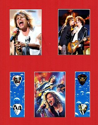 Aerosmith Matted Picture Guitar Pick Set Steven Tyler Walk This Way Cryin' • 18.32£