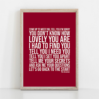 Coldplay THE SCIENTIST Song Lyrics Poster Print Wall Art • 11.95£