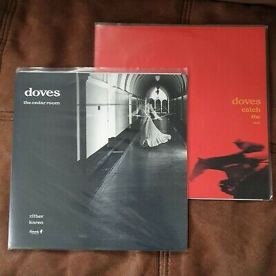 Doves Cedar Room/Catch The Fire 2x 10  Vinyl • 20£