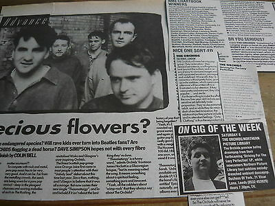 The Orchids - Magazine Cuttings Collection (ref S16) • 4.95£