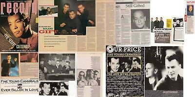 FINE YOUNG CANNIBALS : CUTTINGS COLLECTION - Adverts Interviews  • 4.95£