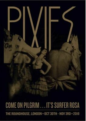 Pixies Come On Pilgrim Surfer Rosa Numbered Screen Print Poster Art New • 55£