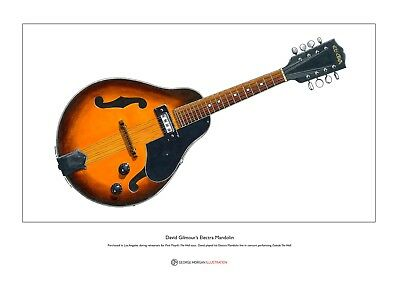 David Gilmour's Electra Mandolin Limited Edition Fine Art Print A3 Size • 18.50£