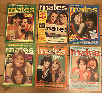 Vintage 1970s Mates Magazine Retro David Essex Abba Sailor 1976 X 6 Lot • 30£