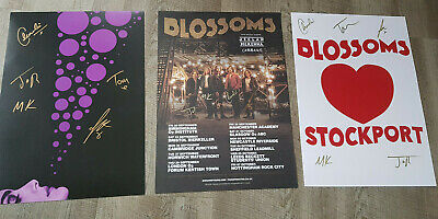 3 Official Merchandise Card Posters Blossoms Band All Signed • 29.99£