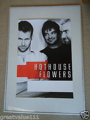 Hothouse Flowers Concert Gig Poster 1988 Unreleased Printers Poster 30 Years Gem • 10£