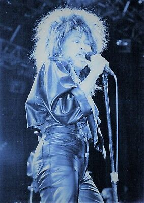 Tina Turner Photo 1985 Unique Unreleased Huge 12 Inches Artic Tinted Exclusive • 6.95£