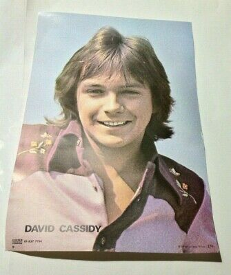David Cassidy Vintage 1970s CONCERT POSTER By COFFER • 4.99£