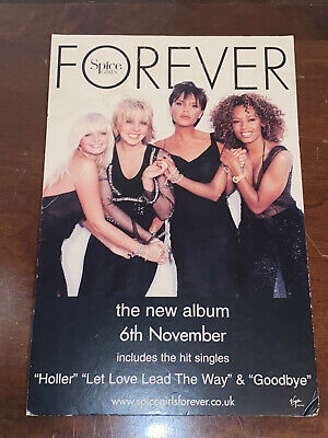 Spice Girls Forever Official Shop Promo Stand Very Rare Very Collectable • 17.50£