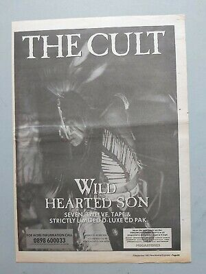 The Cult Wild Hearted Son Original Trade Advert / Poster • 7.99£