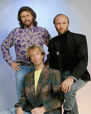 Bee Gees 10  X 8  Photograph No 31 • 3.50£