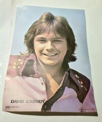 David Cassidy Vintage 1970s CONCERT POSTER By COFFER • 14.99£