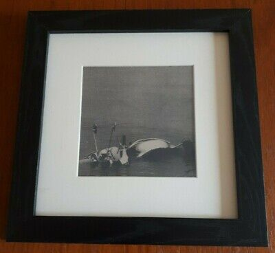 The Who Quadrophenia Framed Prints From The Album - Back Cover • 11.99£