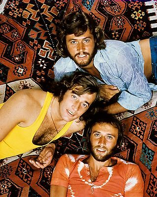 Bee Gees 10  X 8  Photograph No 28 • 3.50£