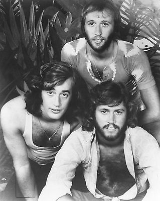 Bee Gees 10  X 8  Photograph No 15 • 3.50£