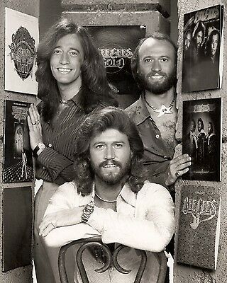 Bee Gees 10  X 8  Photograph No 46 • 3.50£