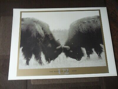 U2 Best Of 1990-2000 Lithograph Mint Condition • 59.99£