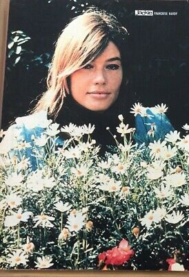 1960s PIN UP PHOTO OF POP ICON FRANCOISE HARDY • 0.99£