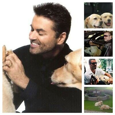 George Michael Photos • 4.99£